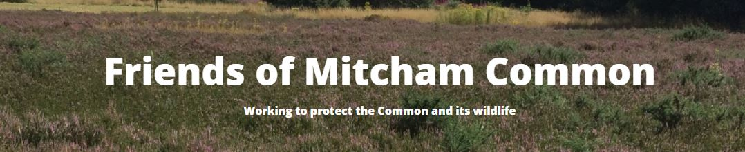 Friends of Mitcham Common